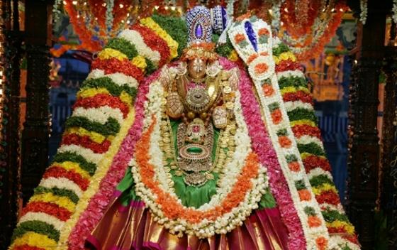 Sri Padmavathi Ammavari Tirupati